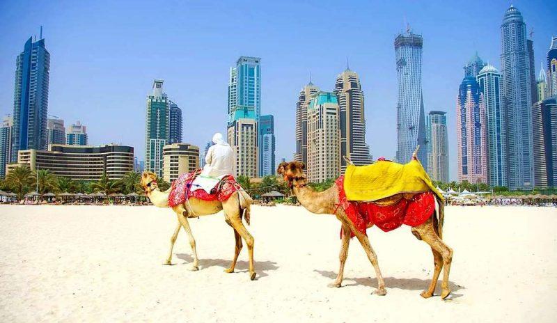 10 интересных фактов об арабских эмиратах