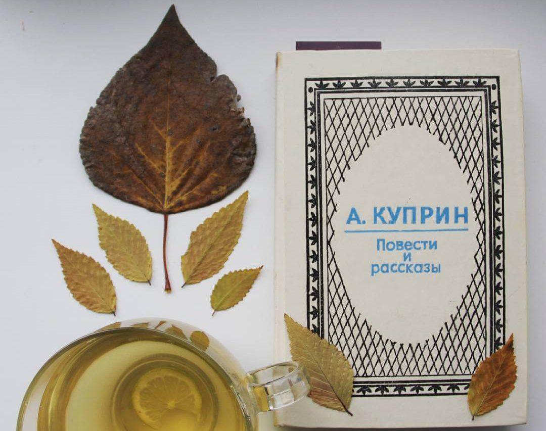 Интересные факты из жизни Куприна - ленивый писатель