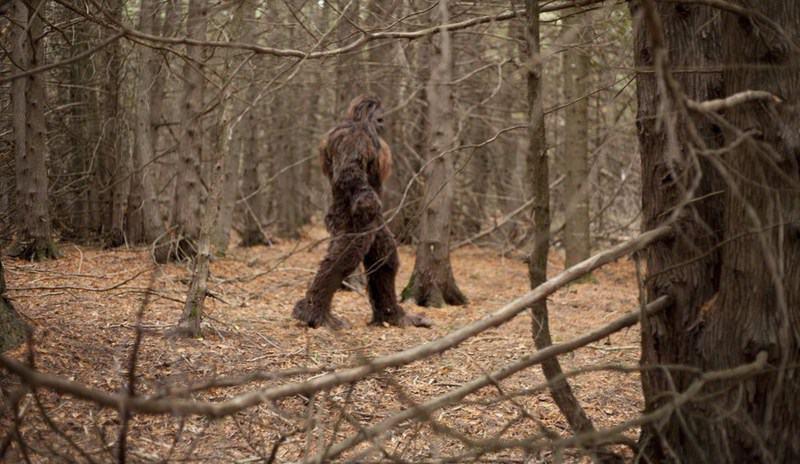 Рисунок 5. Бигфут в лесу.