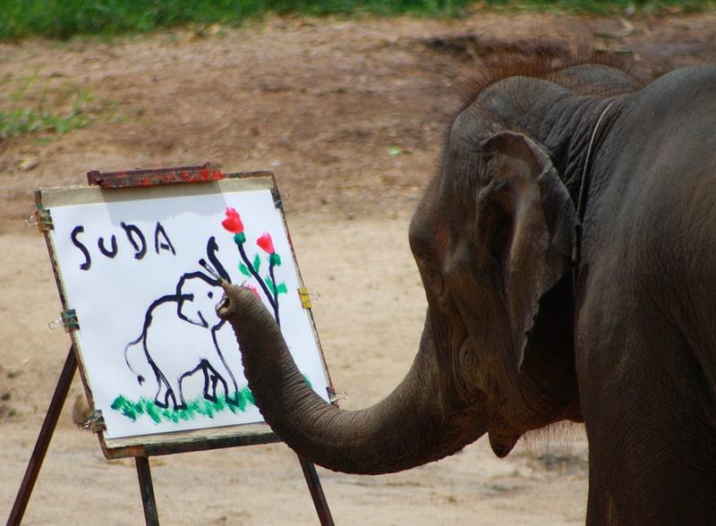 Рисунок 7. Рисующий слон