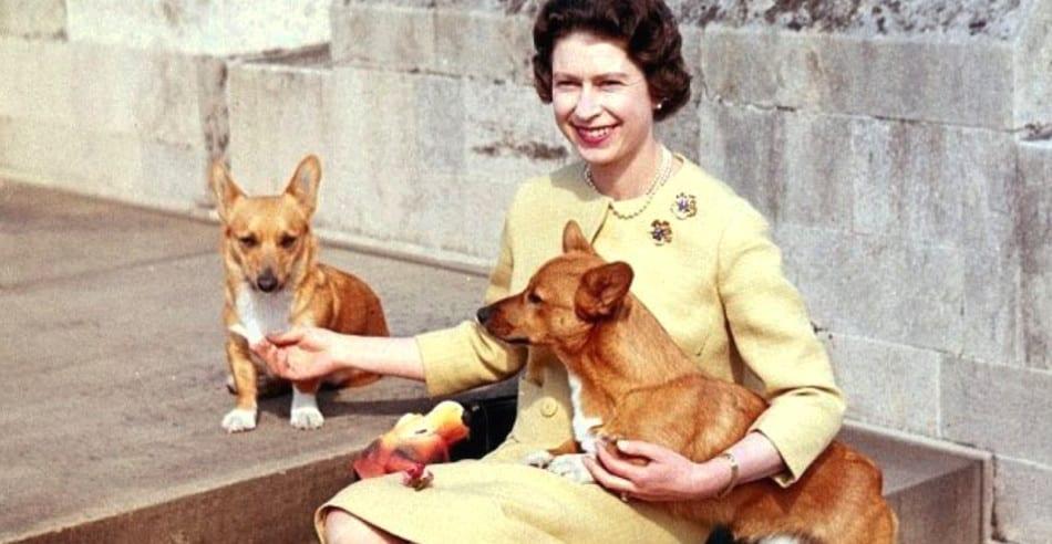 Королевская семья Великобритании: интересные факты