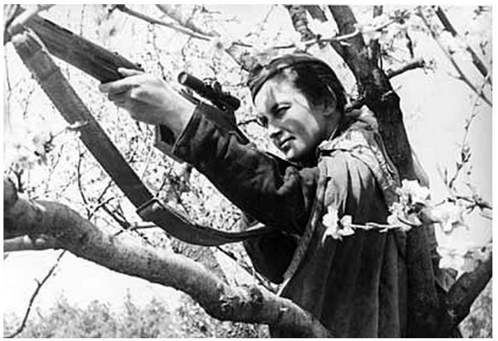 Павличенко на дереве