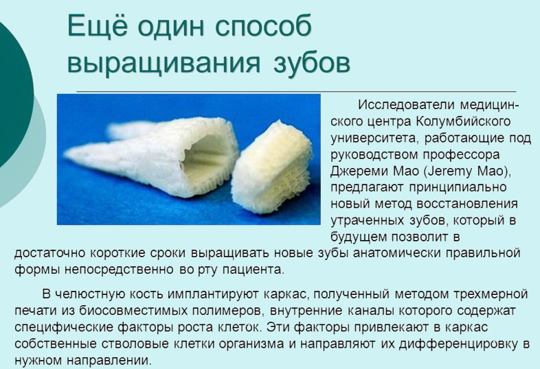 Современный способ выращивания зубов
