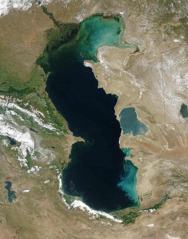 Каспийское море из космоса. В верхней части видно развитие водорослей на севере Каспия— цветение водоема. Это место впадения Волги, которая несет в море поток загрязняющей органики— источник питания для фитопланктона. Фото: Фото: Jeff Schmaltz, MODIS Rapid Response Team, NASA / GSFC