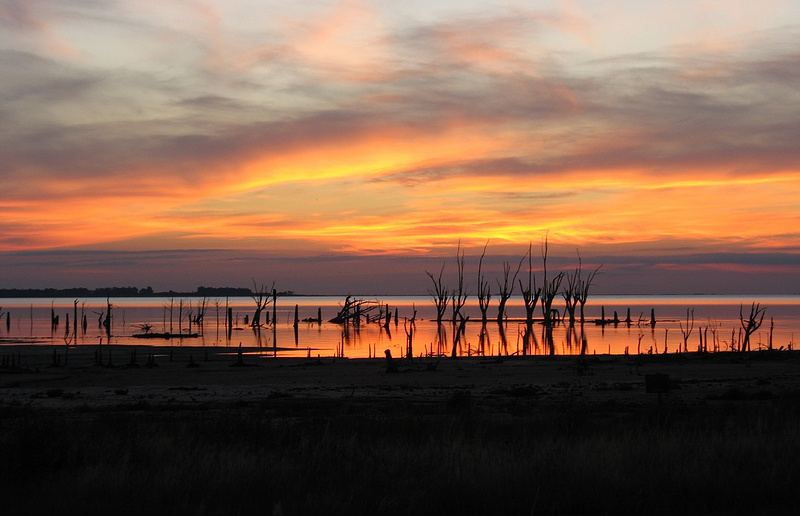 Закат на озере Мар-Чикита. Сухие деревья— бывшая береговая линия, которая была затоплена после очередного подъема уровня воды. Фото: Егор Задереев