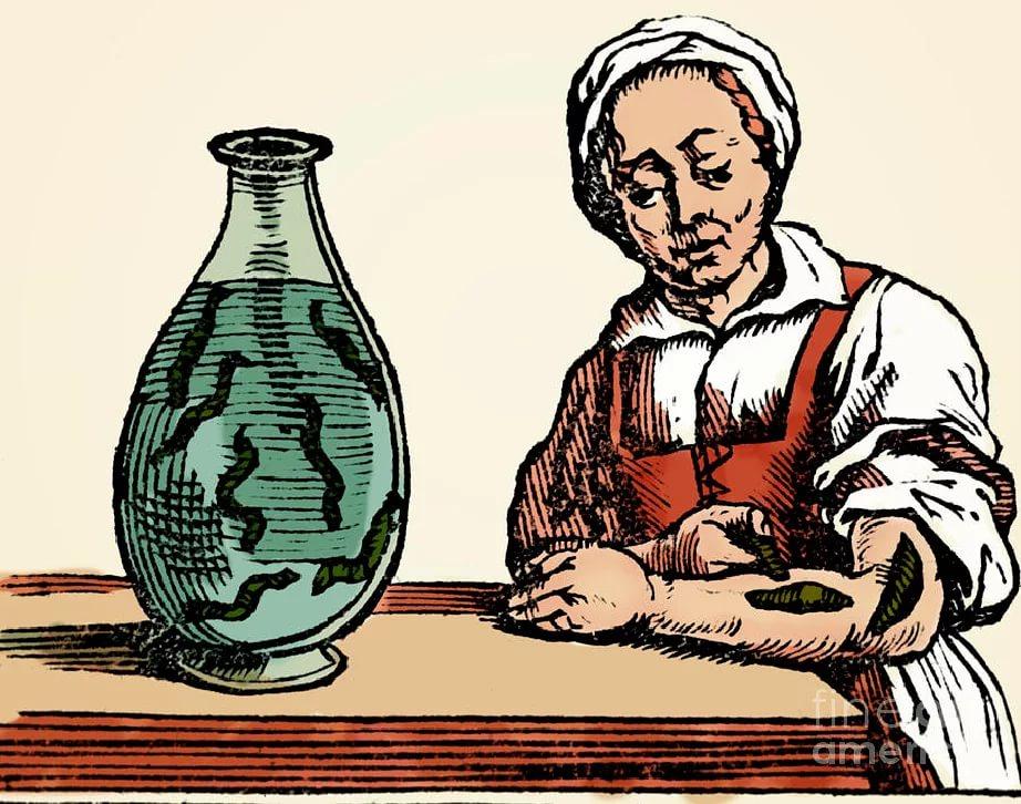 В средневековье пиявок использовали для лечения детей.