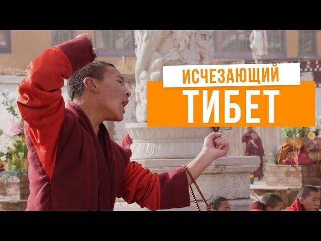 Интервью с Буддой | Монахи против властей - борьба за свободу Тибета