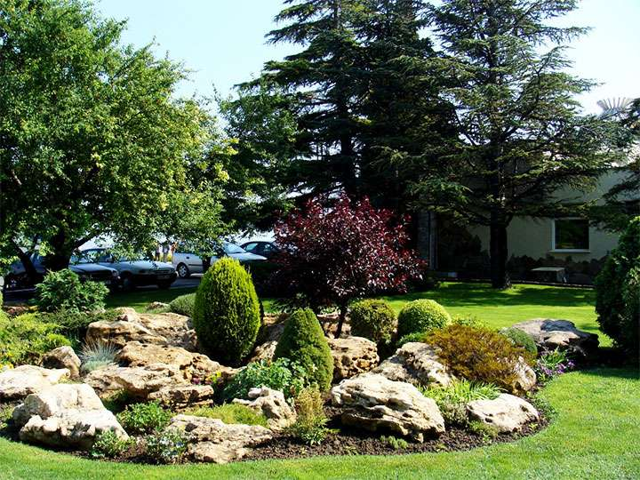 Разновидность каменного сада – рокарий